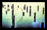 PILINGS & REFLECTIONS-40X24