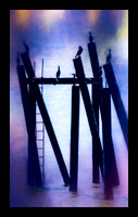 CORMORANTS ON PILINGS-ABSTRACT-40X24